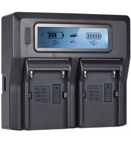 VG-CHG970 2 Charger for Sony NP-F Batteries